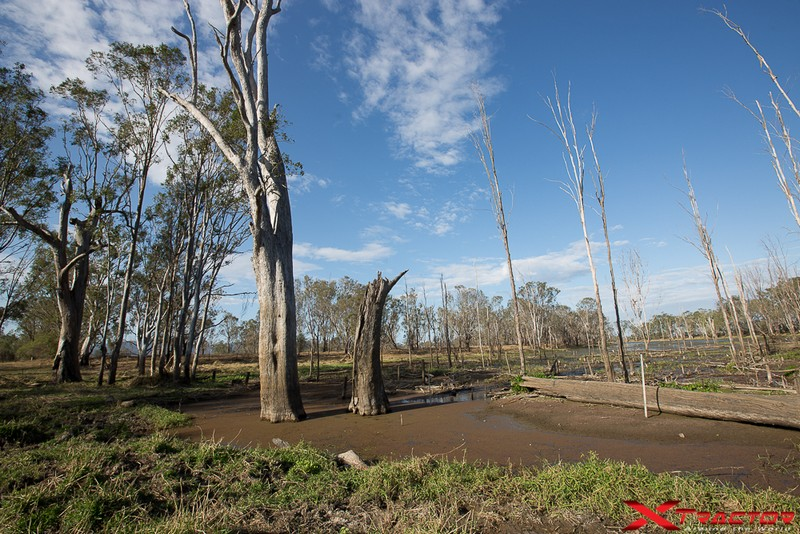 Panorama natuale australiano