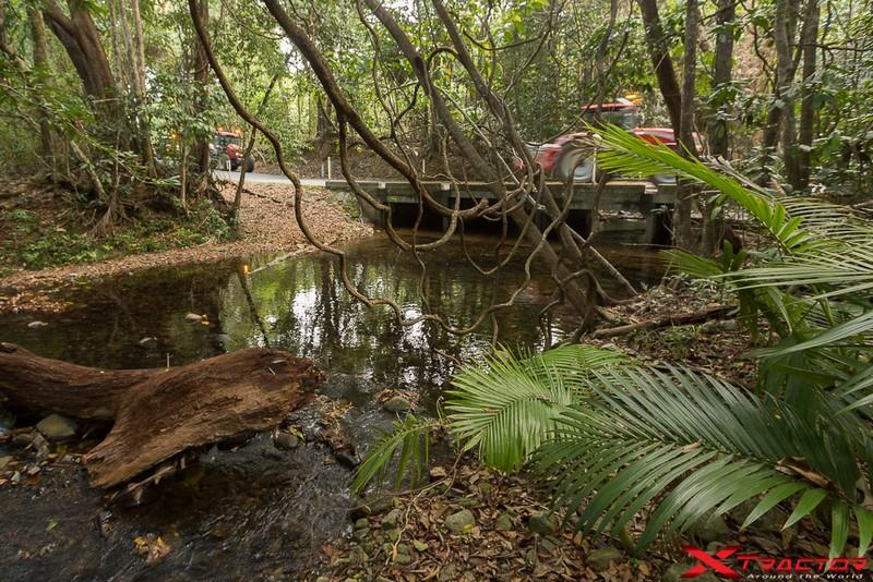 Foresta australiana