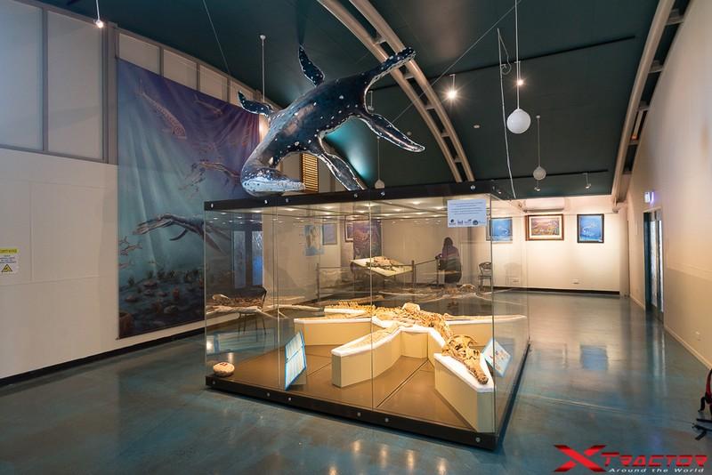 Museo in Australia