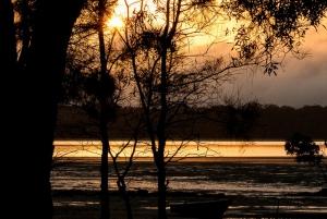 Paesaggio al tramonto in controluce