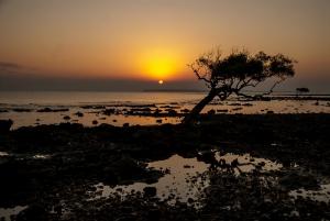 Paesaggio al tramonto con mare